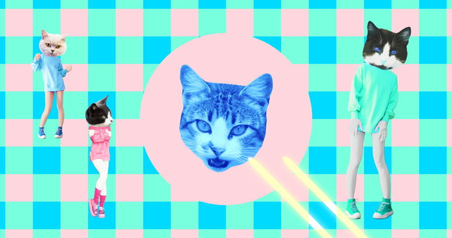 Minimal animation art. Funny animated cats on geometry background #1025361371