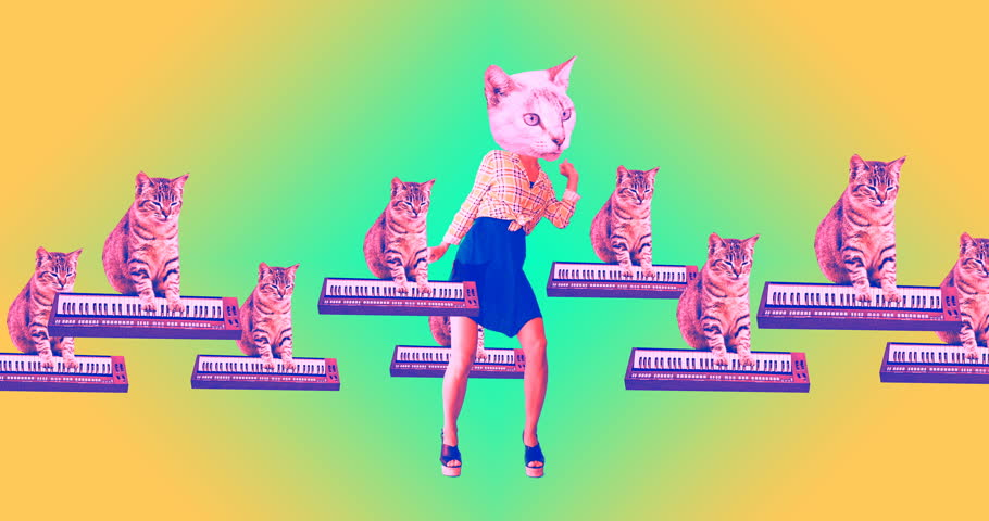 Gif animation minimal art. Kitties are having fun and dancing #1025361425
