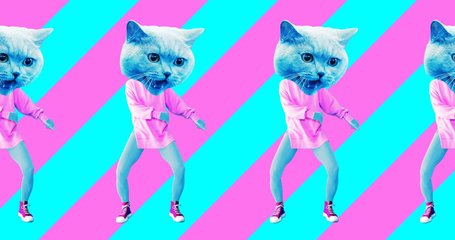 Minimal animation design. Pretty Kitty. Strip lover vibes. Pop and dance mood