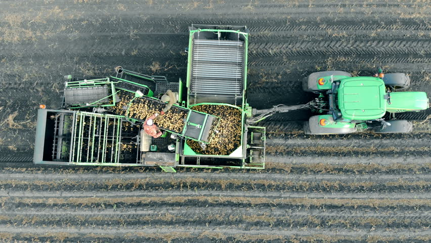 Agriculture machinery, aerial view. People working with potatoes on a tractor's trailer. | Shutterstock HD Video #1025568335