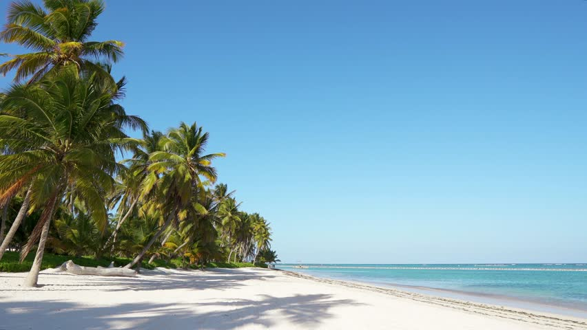 Amazing beach with palms Maldives, white sand and blue turquoise sea water. Summer noon / Island trip on idyllic resort vacation. Travel ocean beach. Coastline bounty island beach with coconut palms #1025593508