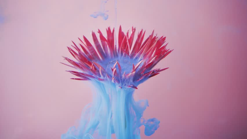 Pink daisy flower with pastel blue ink. Creative abstract nature. 4K art. | Shutterstock HD Video #1025631506
