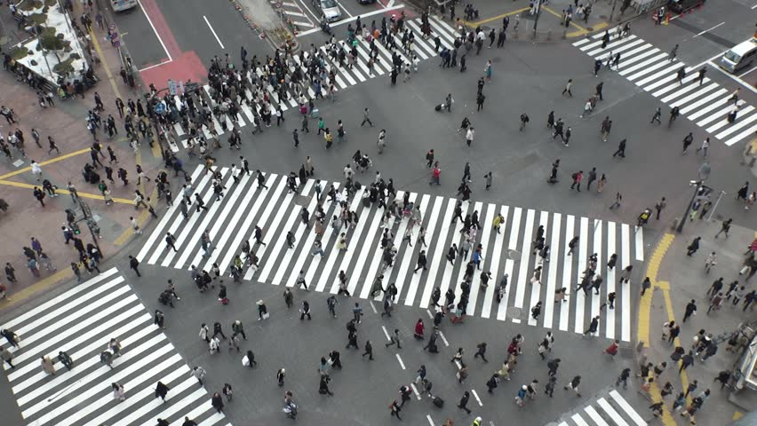 SHIBUYA,  TOKYO,  JAPAN - CIRCA MARCH 2019 : Aerial view around SHIBUYA scramble crossing.  Busy crowded area in Tokyo.  Wide view slow motion shot. | Shutterstock HD Video #1025659022