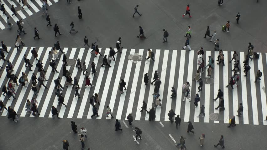SHIBUYA,  TOKYO,  JAPAN - CIRCA MARCH 2019 : Aerial view around SHIBUYA scramble crossing.  Busy crowded area in Tokyo.  Wide view slow motion shot. | Shutterstock HD Video #1025659031