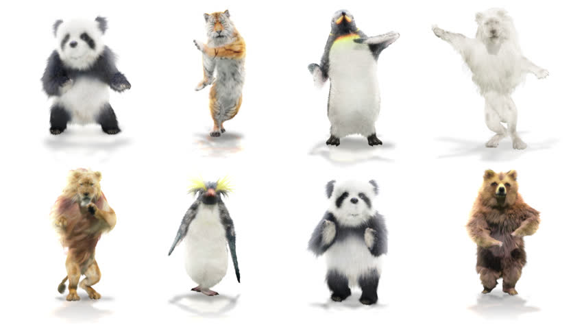 Panda tiger penguin penguins White lion bear Zoo CG fur 3d rendering animal realistic CGI VFX Animation  Loop Crowd dance composition 3d mapping cartoon Motion Background,with Alpha Channel