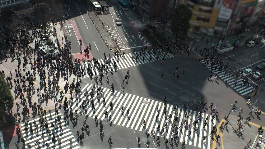 SHIBUYA,  TOKYO,  JAPAN - CIRCA MARCH 2019 : Aerial view around SHIBUYA scramble crossing.  Busy crowded area in Tokyo. | Shutterstock HD Video #1025717762