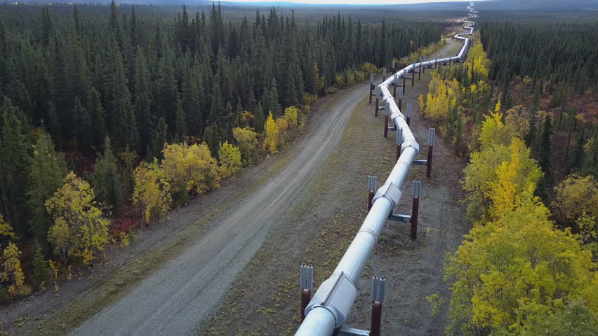 Aerial shot flying over the Trans Alaska Pipeline running through the middle of a green forrest in the countryside