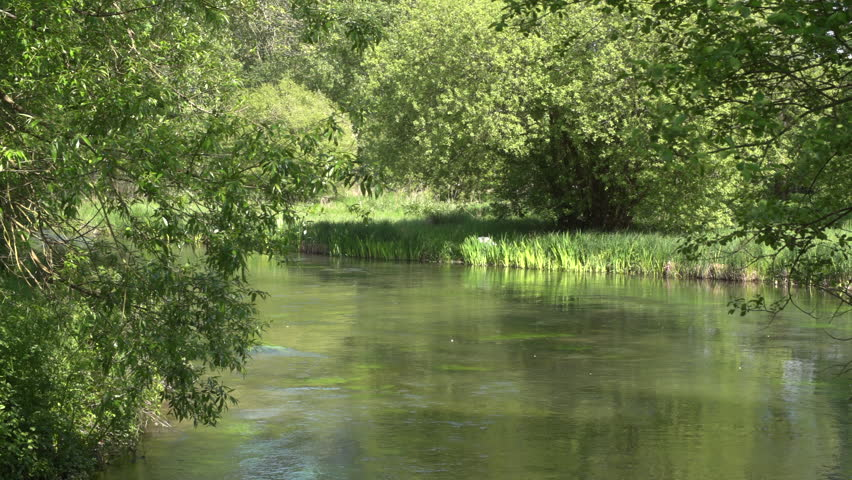 The River Itchen chalk stream trout fishing river in Itchen Abbas near Winchester in Hampshire, United Kingdom, filmed in spring