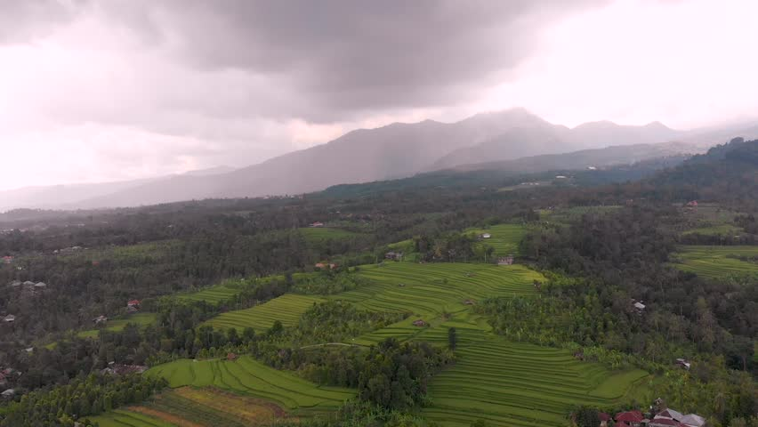 Aerial shot high above rice paddies in Bali, Indonesia, slowly tracking backwards away from the mountains and tress in South East Asia. rice farms se stacks to help the water irrigation | Shutterstock HD Video #1025845250