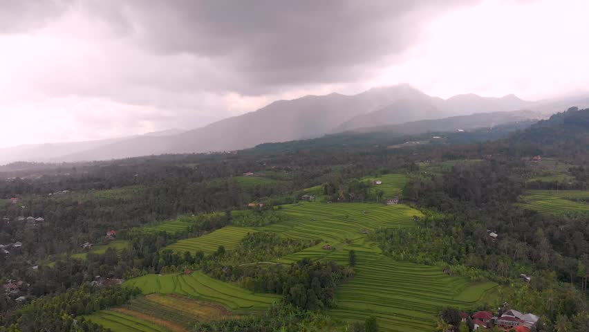 Aerial view of rice paddies in Bali, Indonesia,ing away from the mountains to reveal the rice shelves. The rice farmers use a stacking system in south East Asia to help the water irrigation | Shutterstock HD Video #1025847761