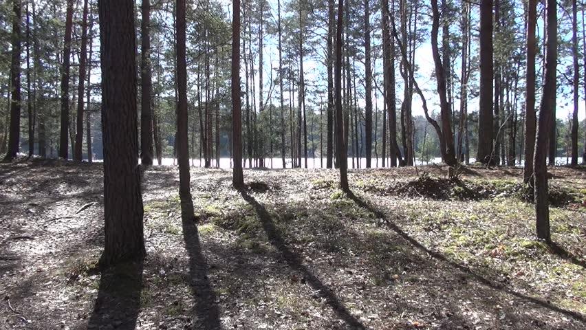 Rest on the spring Streshno Lake   Shutterstock HD Video #1025897342