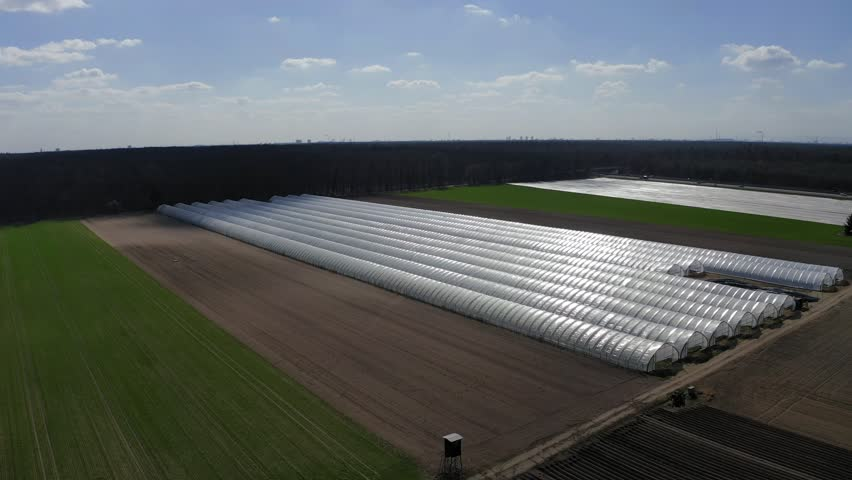 Aerial view, flight to Asparagus fields, vegetable fields, asparagus and vegetables covered in the greenhouse, Bergstrasse, Hesse, Germany