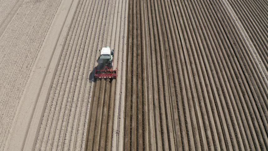 Aerial view, flight over Asparagus field, Tracktor edited asparagus fields, Bergstrasse, Hesse, Germany