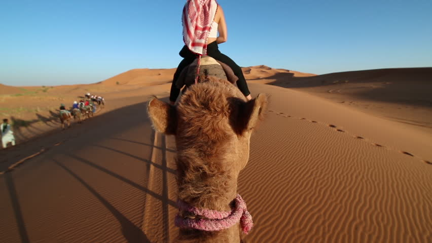 POV shot riding a Camel through the Desert. Adventure and travelling concept.