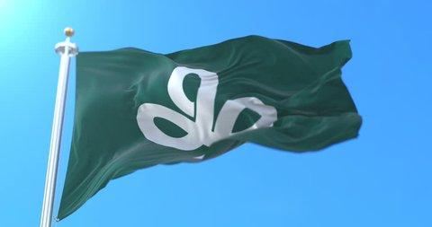 Flag of Miyagi Prefecture japanese, Japan. Loop