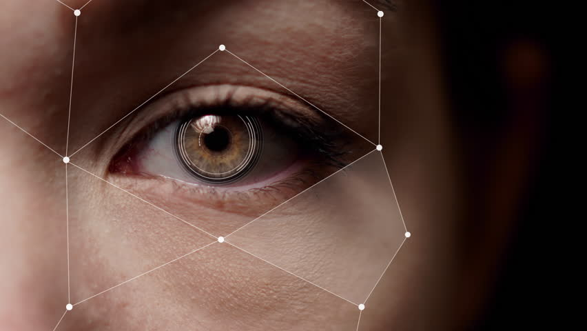 Half face facial recognition. Augmented reality. Brown female eye scan. Royalty-Free Stock Footage #1026328310