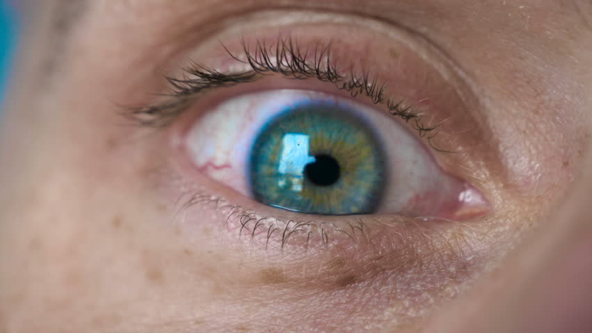 The Green ( Light green ) of the human eye is very closely represented by the pulsation of the eye and blinking. Concept of:  Light eyes, Close to the eye, Man, Woman, In slow motion. | Shutterstock HD Video #1026332402