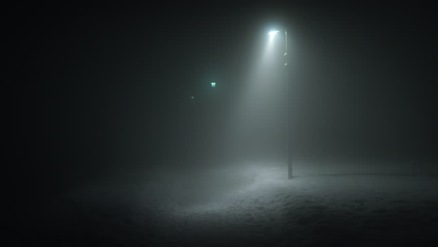 Creepy park at night street lights disappearing into thick fog Reykjavik Iceland winter night