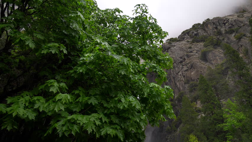 Yosemite Falls during the day.  | Shutterstock HD Video #1026484166