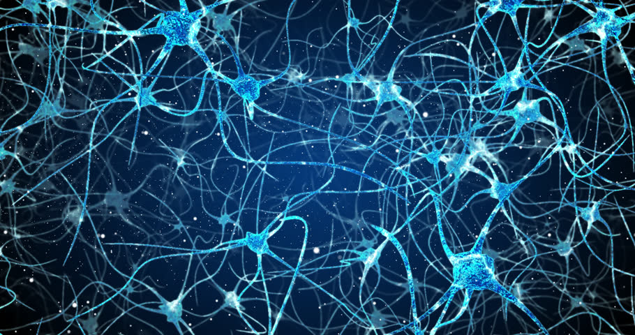 Neurons in the head - flight, neuroactivity, synapses, Neurotransmitters, brain, axons | Shutterstock HD Video #1026499949