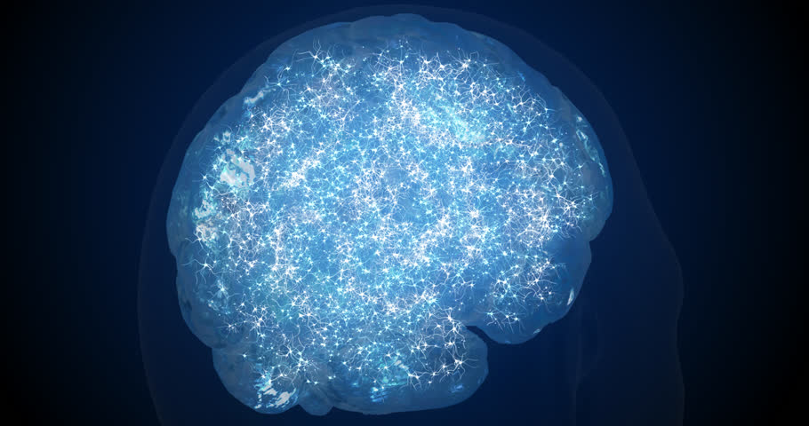 Neurons in the brain. 3d visualization of neuroactivity. The work of synapses. Tomography of the brain. | Shutterstock HD Video #1026508880
