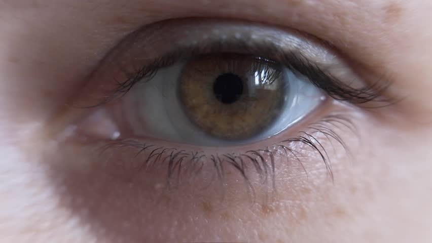 Closeup of beautiful brown eyes with a contact lens opening a human iris macro natural beauty   Shutterstock HD Video #1026646103