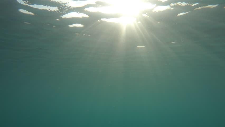 Underwater Sea scene view with Sun Light Rays  through the water's glittering   | Shutterstock HD Video #1026648086