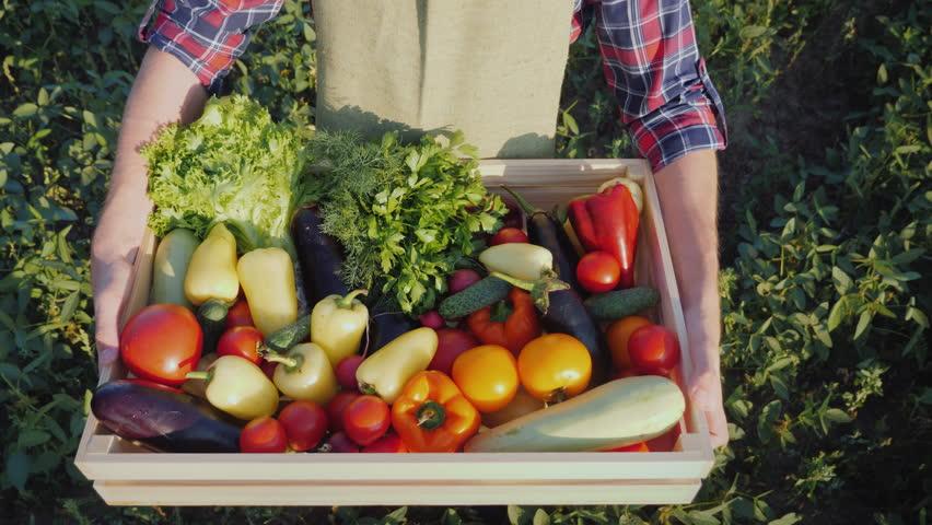 The farmer brings a box of fresh vegetables, a top view. | Shutterstock HD Video #1026722774