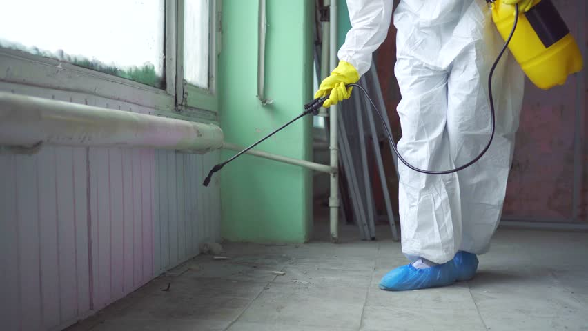 Exterminator in overalls carries out processing of the room from a mold Royalty-Free Stock Footage #1026734270