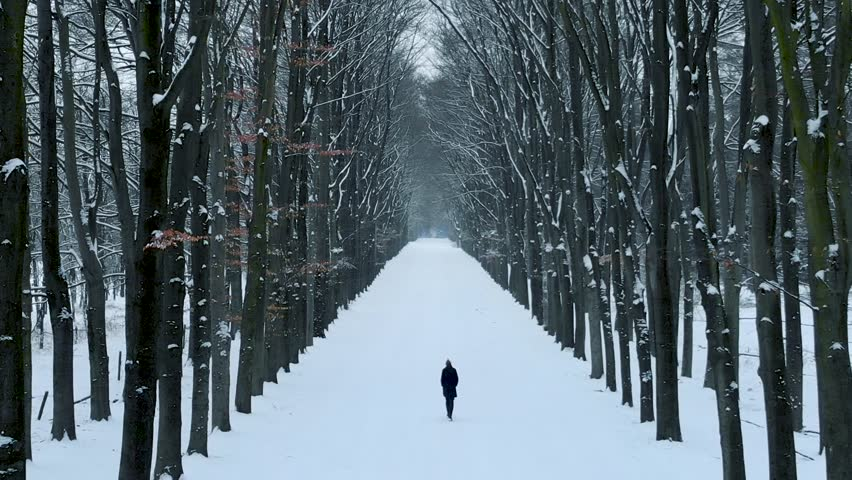 Aerial drone view of girl walking alone in snow covered forest.