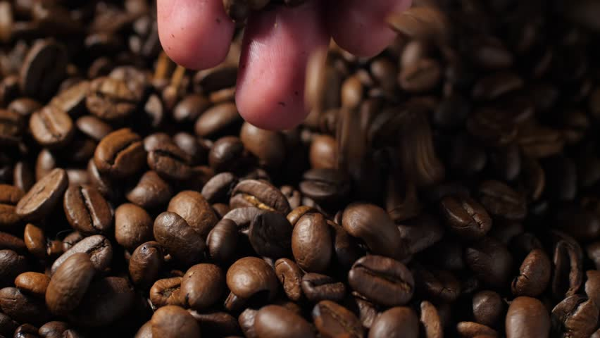 Woman hand pouring coffee beans in slow motion. Close up, 60fps, 4K shot. | Shutterstock HD Video #1026927917