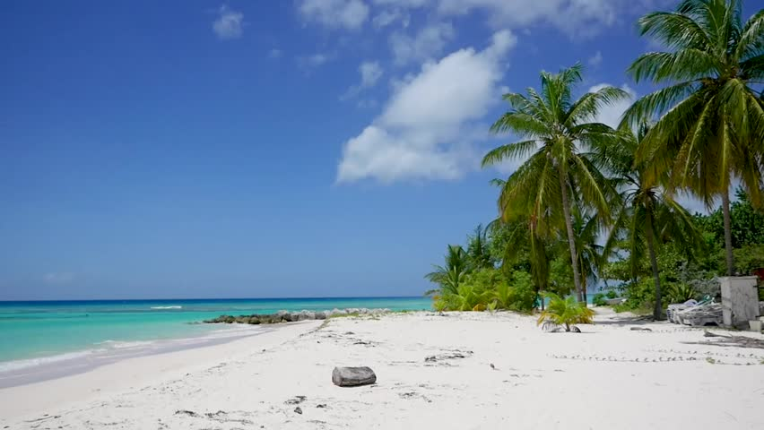 Old Waste Can left on a Tropical Beach   Shutterstock HD Video #1027115591
