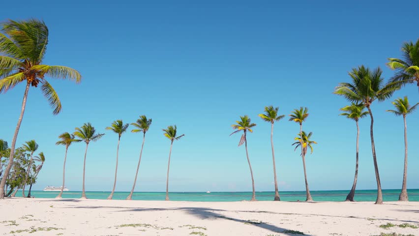 Beautiful wild island beach and palms Caribbean sea and white sand and blue sky and beach loungers. Amazing summer travel vacation beach background. Turquoise sea water and palm trees | Shutterstock HD Video #1027174925