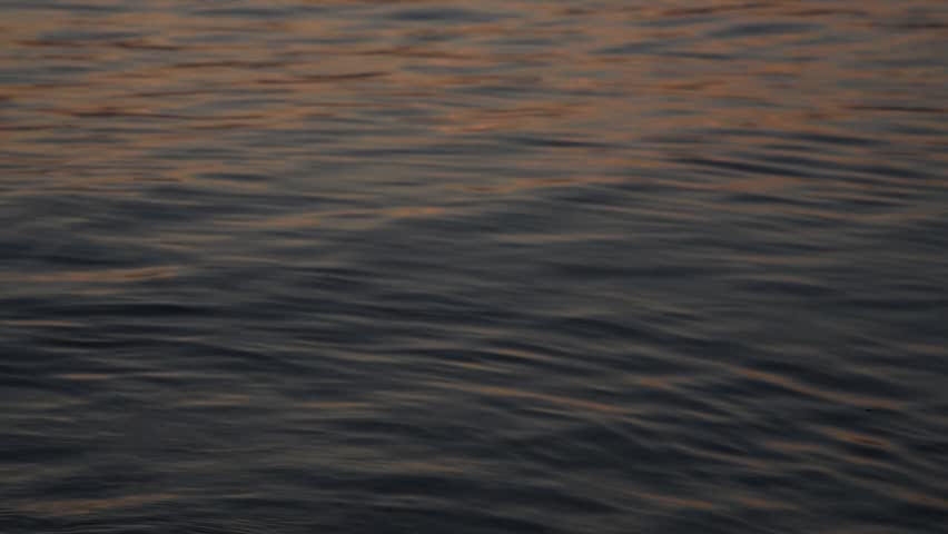 Slow motion of calm waves in rolling in in sunset light reflecting the warm light.   Shutterstock HD Video #1027654718
