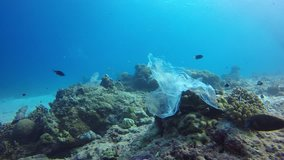 Plastic pollution problem in ocean. Bags, cups and straws discarded in sea and on coral reef