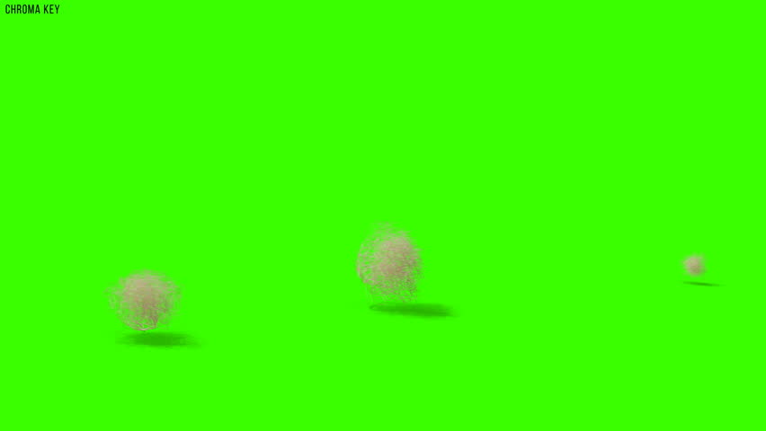 Tumbleweeds passing on a dessert 4k on chroma key green screen, matte and shadows | Shutterstock HD Video #1027718831