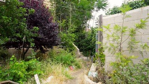 local garden in jerusalem at winter, stone buildings around
