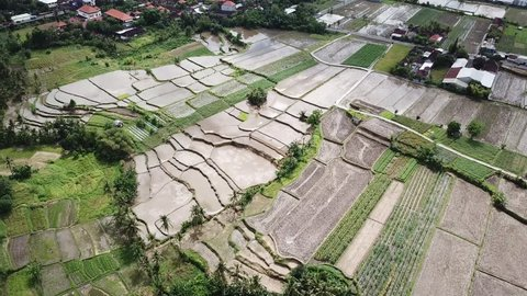 4K aerial video filmed above breathtaking Tegalalang rice terraces in Bali, Indonesia