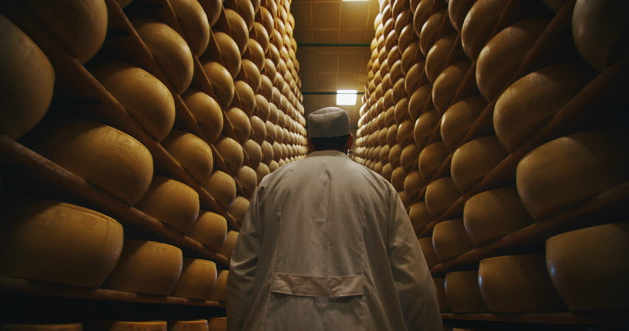 Slow motion close up of a cheesemaker is controlling the seasoning of Parmesan cheese, which was maturing by ancient Italian tradition for many months.