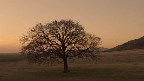 landscape at sunset/sunrise - Dobrogea, Romania