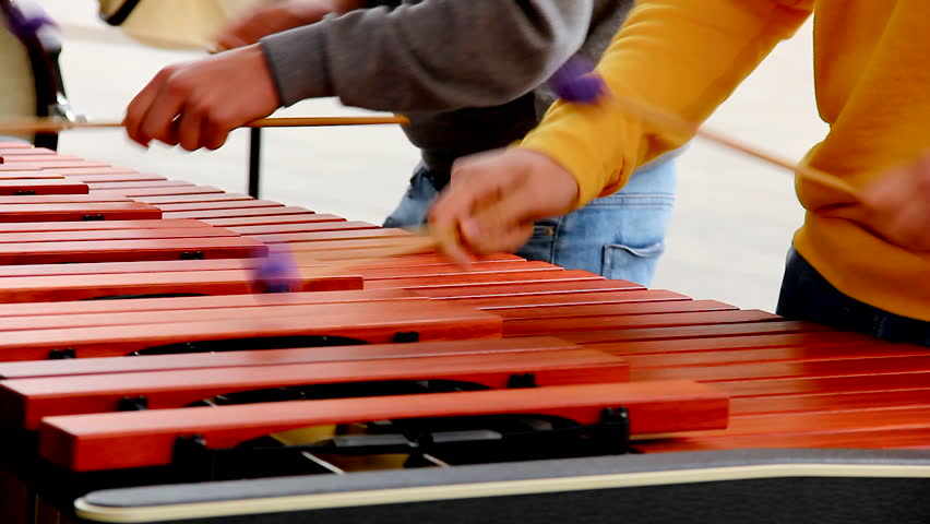 Two kids playing xylophone with purple ball mallets. Children performing at concert with percussion musical instrument. Arts, song, melody concepts | Shutterstock HD Video #1028116829