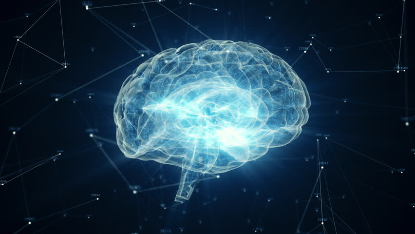 The human brain rotates formed of luminous particles. Plexus structure revolving around. Seamless loop 4k animation   Shutterstock HD Video #1028200643