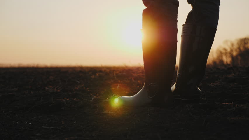 Close-up legs of male farmer in rubber boots walking through cultivated agricultural field in the rays of the sun at sunset. Camera tracking. Organic products concept | Shutterstock HD Video #1028239397