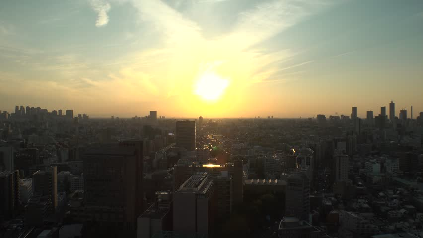 TOKYO,  JAPAN - CIRCA APRIL 2019 : Aerial sunset view of CITYSCAPE of TOKYO around Shinjuku city and Ikebukuro city.  View from Bunkyo ward. | Shutterstock HD Video #1028271629