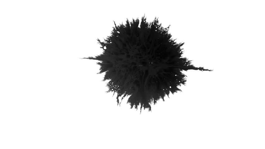 Ink Runs, Blots, 4K footage. Ink in water, Beautiful black watercolor ink drops transition on white background - ink effect, transparent, transition, chamber, isolated, with circle organic flow expand | Shutterstock HD Video #1028355821