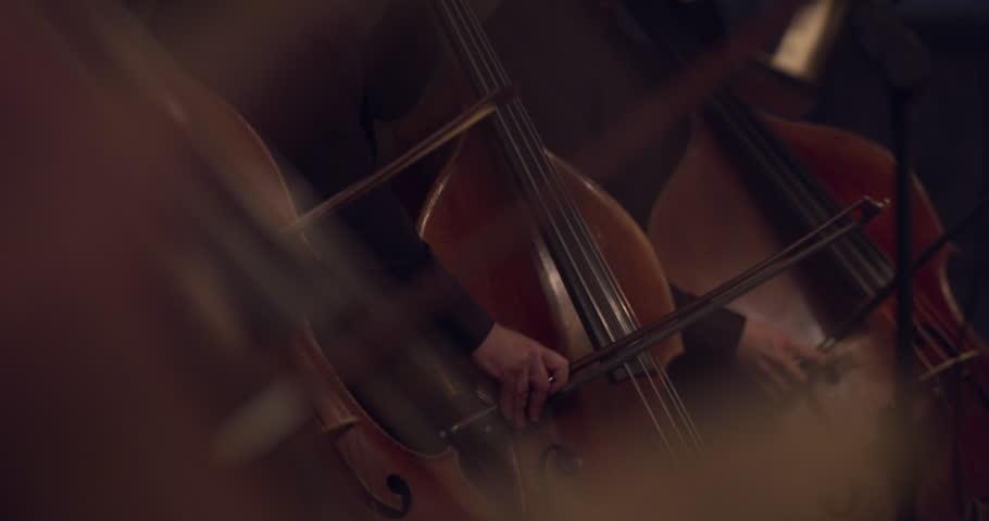 Symphony orchestra violin  | Shutterstock HD Video #1028408531