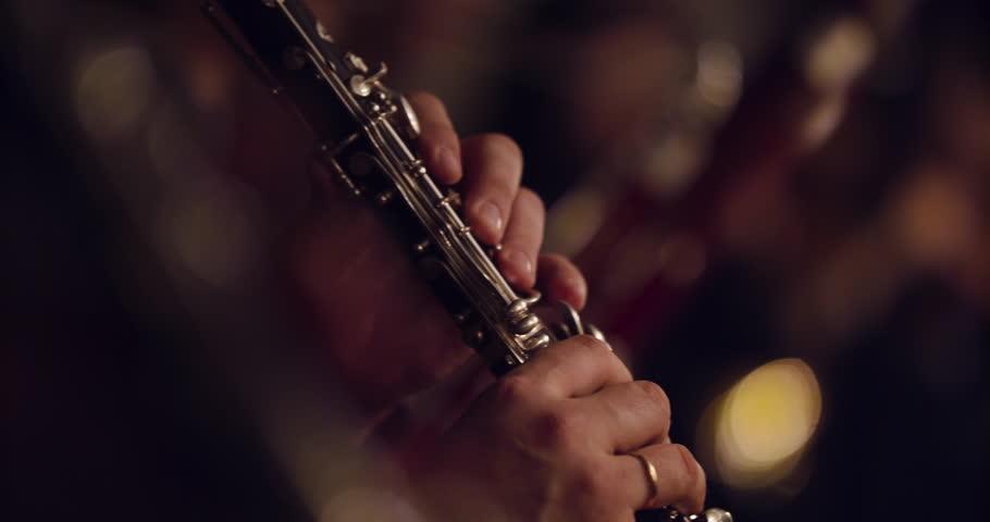Symphony orchestra brass section   | Shutterstock HD Video #1028408624