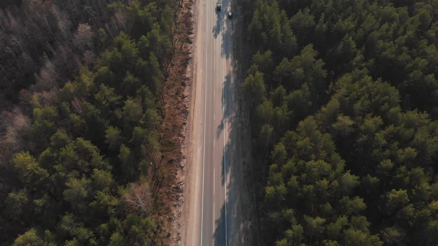 Air view as the car rides on the road through the forest. The car goes through the forest. Aerial view 4K #1028411588