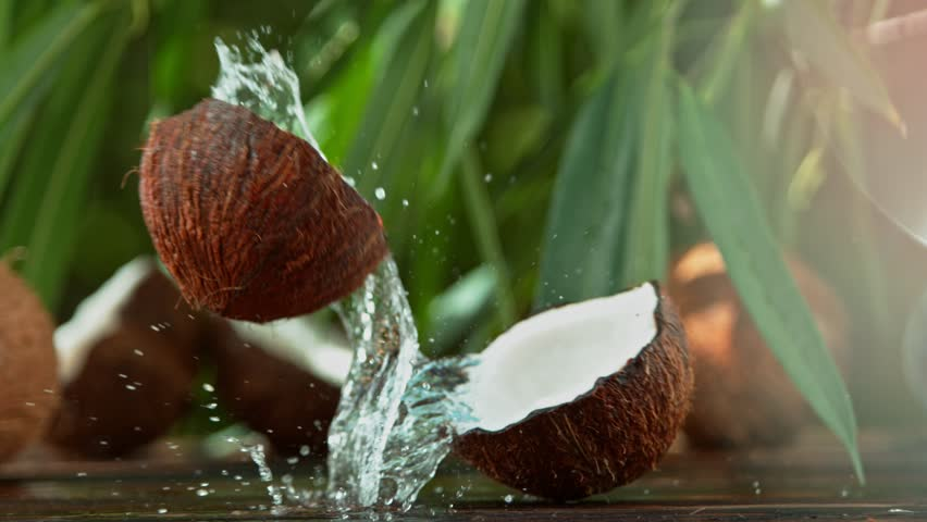 Super Slow Motion Shot of Water Splashing from Coconut at 4K.