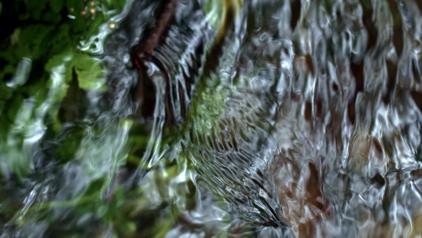 Pure water of forest river close up. Babble of brook water. Cold water flowing from spring in forest. Life-giving moisture. Gentle murmur of brook. Babbling brook in woods